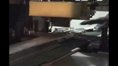 bopp膜枕式包装机包装饼干面包医药等产品