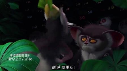 马达加斯加(片段)超级可爱小松鼠