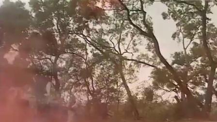 封神榜陈浩民(国语版)-第40集