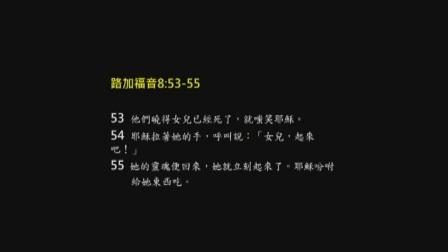 CD C (1)