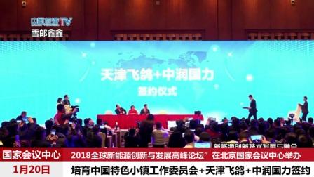 中国特色小镇 天津飞鸽 中润国力签约