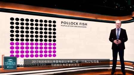3MMI - 较低的配额,较小的鱼,较少的母鱼 - 今年PWS会不会有狭鳕?