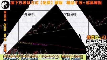股票涨停布局战法波浪理论的实战运用技巧法 (1)