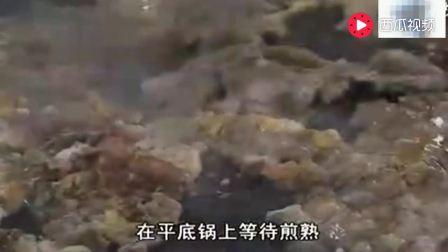 舌尖上的中国: 潮州生蚝独特做法, 老外吃完竟找不到形容词!