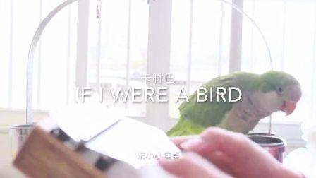 怎么选择卡林巴琴 if I  were  a bird 聆听拇指琴 宋小小
