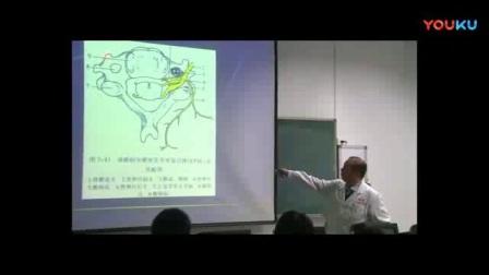 课时56 脊柱断层影像解剖(2)_标清