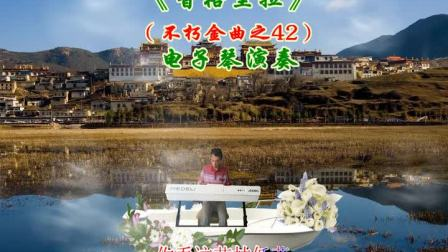 我电子琴演奏《香格里拉》电影莺飞人间插曲台湾夜猫子女四重唱组CD歌
