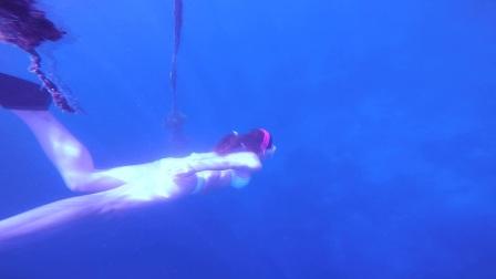 田慧菲律宾宿雾潜水2