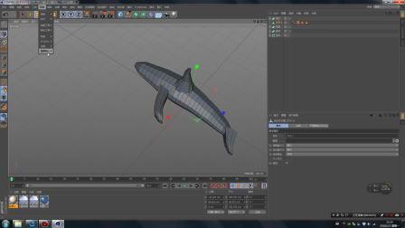 01 LowPoly小海豚 C4D建模部分