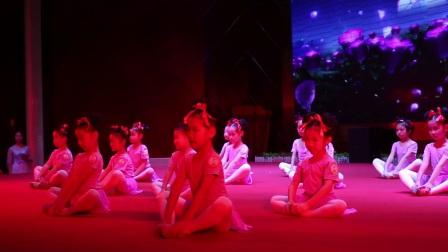 2017望牛墩艺芭莎艺术培训中心在喜月轩汇报演实录