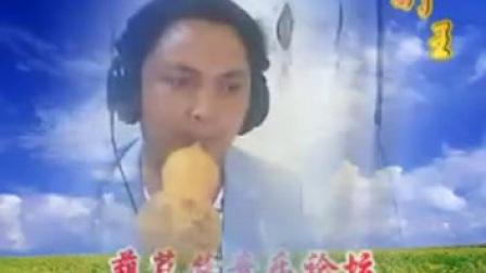 傣乡情歌视频