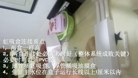视频2:虹吸盒组装(超白缸专用不需要)