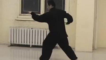 杨海2010年形意拳八式视频