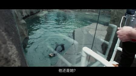 郭涛和石头带着妹妹去水族馆啦