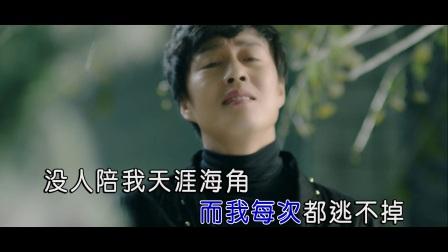 赵鑫 - 温柔刀