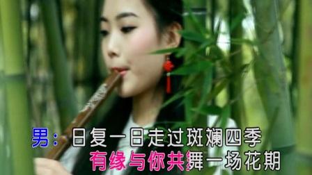 兰丽萍、蔡吉亭 - 假如不曾遇见你