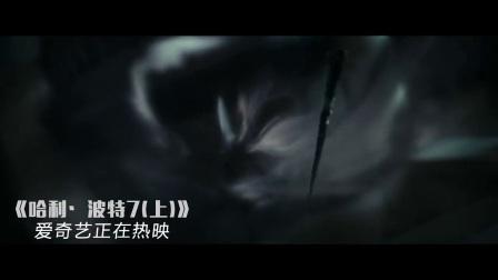哈利波特与死亡圣器(上)(片段) 哈利波特大战马尔福全家