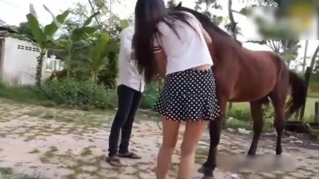 美女和马儿人与动物看完我控制不住自己的情绪
