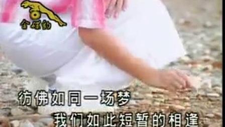 王雪晶 青苹果 野百合也有春天_标清