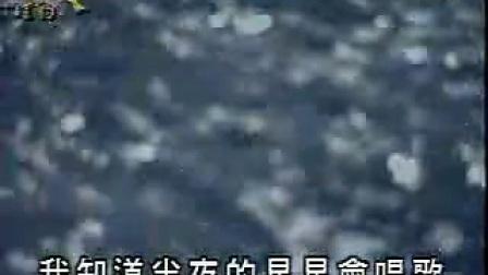 王雪晶-鲁冰花KTV_标清