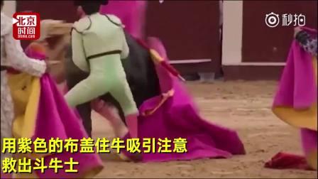 用生命表演!斗牛士遭牛疯狂攻击 伤口15厘米竟还坚持……
