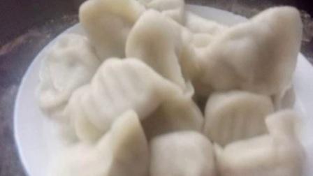 黄瓜大虾三鲜水饺,清气,鲜味、香而不腻保你吃不够