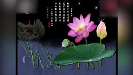 葫芦丝简谱葫芦丝零基础入门教程葫芦丝教学视频《映山红》葫芦丝演奏葫芦丝歌曲葫芦丝