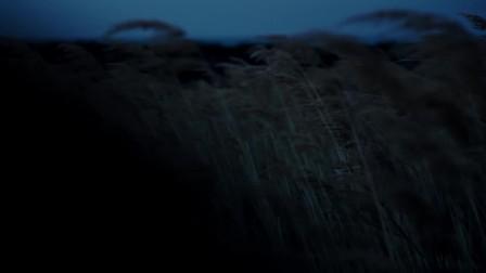三星盖乐世新品-捕捉暗光之美