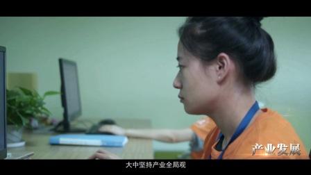 大中镇招商形象片2016