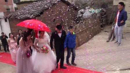 【曾导权 林小琳】婚礼盛典