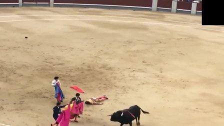 斗牛意外瞬间, 公牛被刺无数剑, 最后跟斗牛士拼了!