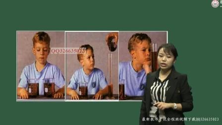 幼儿园教师招聘考试视频课程【学前心理学】第21讲:儿童心理发展理论主要流派的基本观点(二)