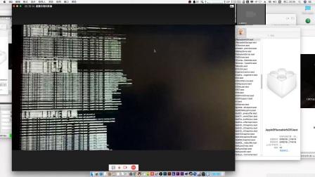 amd ryzen黑苹果安装直播 基于聆曦原创安装镜像