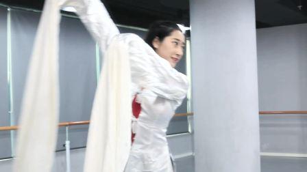 中舞网舞蹈教学视频《江山情》