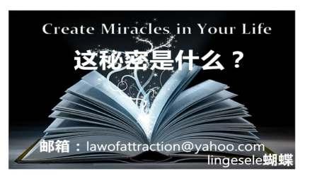lingesele吸引力法则-读秘密英文版(内含详解和运用方法)-全英文the secret-law of attraction