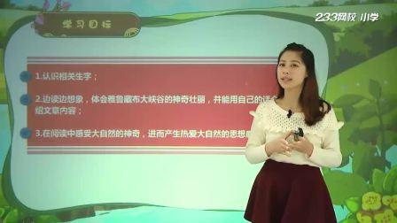 04、雅鲁藏布大峡谷(一)小学四年级语文上册人教版需要全册请联系QQ1401430975