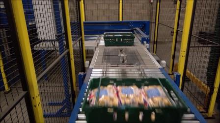 VPM-BL 盒/箱/筐码垛机 小袋土豆