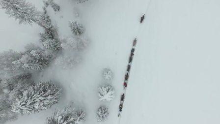 Ski Adventure 预告片