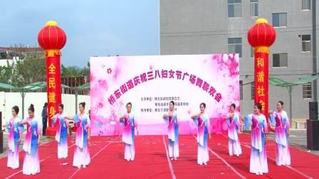 潮州市湘桥区桥东街道庆祝三八妇女节广场舞联欢会