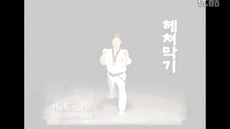 跆拳道教学5CURSO TAEKWONDO_HIGH_高清