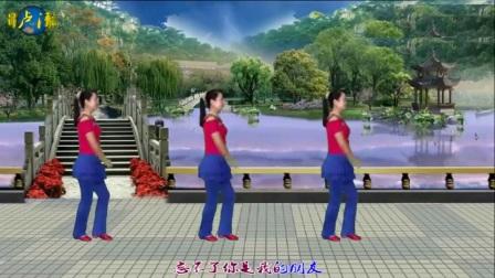 卢清秀广场舞《忘不了的温柔》编舞:杨丽萍