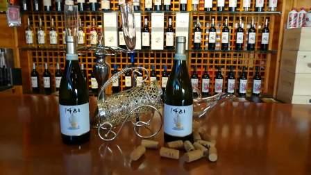 1421葡萄酒  1421意大利半甜起泡白葡萄酒    1421葡萄酒