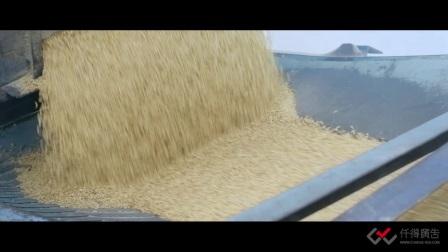仟得广告影视制作案例:葵花阳光米业企业宣传片