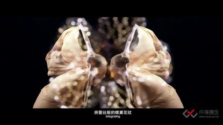 仟得广告影视制作案例:流行美发饰形象宣传-蜕变与绽放篇