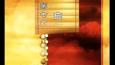 太极拳名家陈小旺陈氏太极拳十九式高清完整版