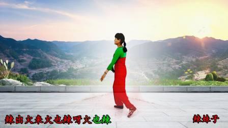 舞韵含香广场舞《辣妹子》  编舞:苗苗