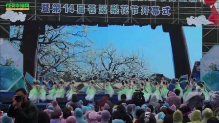 苍溪幸福网·苍溪(2018)第14届梨花节开幕式完整视频