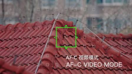 适马150-600 C在富士X-T2上相位对焦演示(Fringer EF-FX Pro转接环)