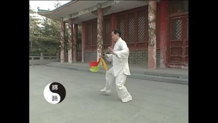 赵幼斌老师杨氏太极13刀演示