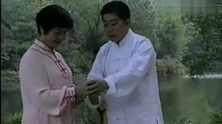 A,少帅傅清泉教学传统杨式太极 拳85式,教课书标准,详细,具体。ABCD四盘。